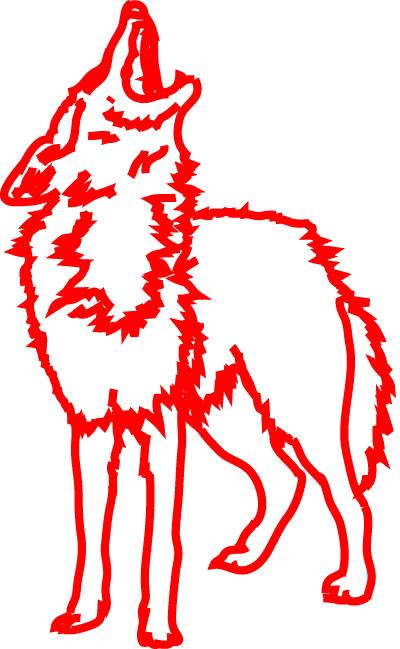 Coyote alone