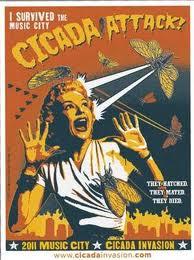 Cicada poster