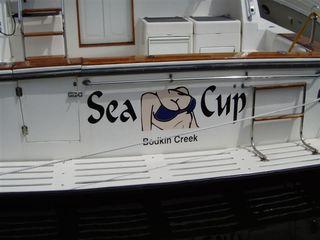 Sea Cup (Medium)