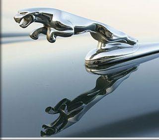 Jaguar+Leaper