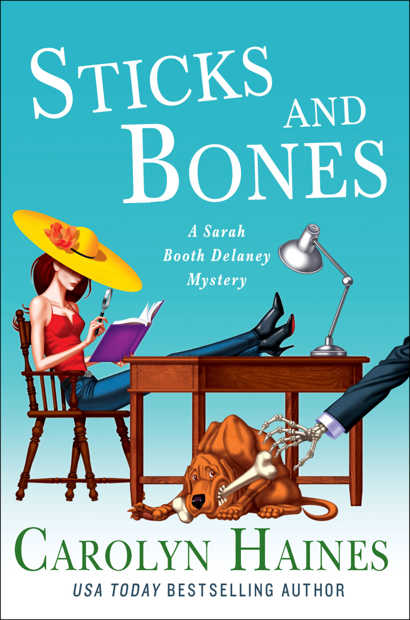 Sticks and bones cover