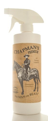 Chapman lin