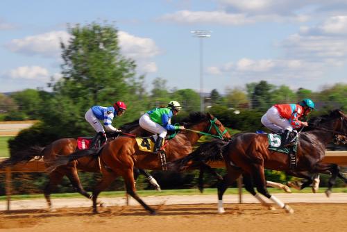 Horse-racing-2107381_960_720