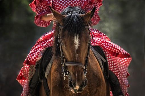 Horse-1139142__340