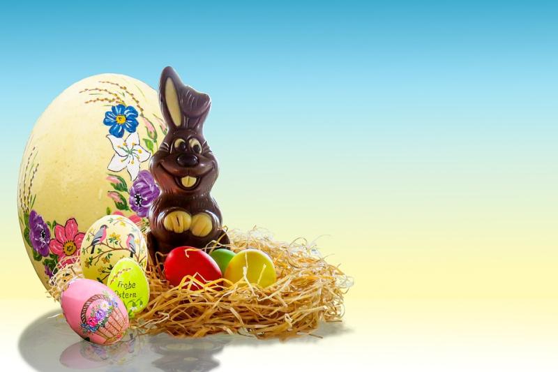 Chocolate basket and bunny